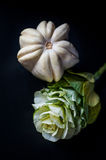Ornamental pumpkins and Flowering Cabbage Royalty Free Stock Image