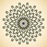 Ornamental round floral pattern Stock Images