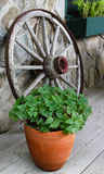 Ornamental Rustic Wagon Wheel North Carolina BRP. A retro wagon wheel decorates the front porch of a cottage off the Blue Ridge Parkway adding to the rustic Royalty Free Stock Photos