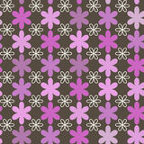 Ornamental seamless pattern. Royalty Free Stock Photos