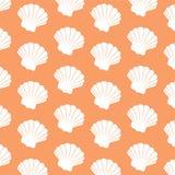 Ornamental shell Royalty Free Stock Photo