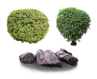Ornamental shrubs and stones. Ornamental shrubs and stones can be used in landscaping projects stock image