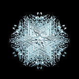 Ornamental snowflake Royalty Free Stock Photography