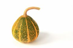 Ornamental squash Royalty Free Stock Image