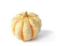 Ornamental squash Stock Photos