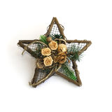 Ornamental star Stock Photography