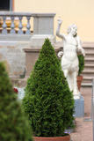 Ornamental tree cone. Ornamental tree cone amid statues and banisters Royalty Free Stock Image