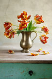 Ornamental tulip still life Royalty Free Stock Photos