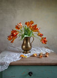 Ornamental tulip still life Royalty Free Stock Photo