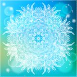 Ornamental vector illustration of a mandala Stock Images