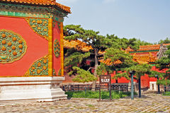 Ornamental walls and old pines in the Forbidden City,  Beijing, Royalty Free Stock Images