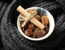 Ornamental, Xmas, christmas pine cone, handmade Stock Image