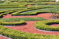 Ornamented garden Royalty Free Stock Image