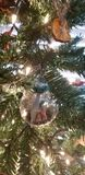 ornamenten stock fotografie