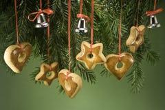 Ornamenten die van tak hangen Stock Afbeeldingen