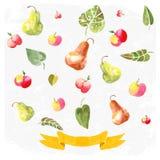 Ornamenten met geschilderde appelen stock illustratie