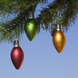 Ornamenten op boom. Stock Foto's