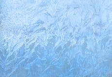 Ornamenti blu della gelata Immagini Stock