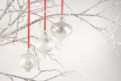 Ornamenti d'argento sulle filiali di cristallo Fotografia Stock
