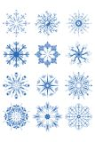 Ornamenti decorativi del fiocco di neve Immagini Stock Libere da Diritti