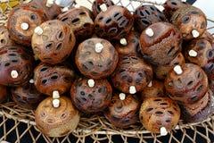 Ornamenti del baccello del seme di Banksia Fotografie Stock Libere da Diritti