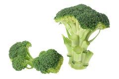 Ornamenti del broccolo Fotografia Stock Libera da Diritti
