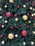 Ornamenti di festa su un albero Fotografie Stock