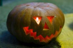 Ornamenti di Halloween in una testa della zucca Fotografia Stock Libera da Diritti