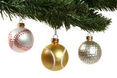 Ornamenti di sport Fotografia Stock