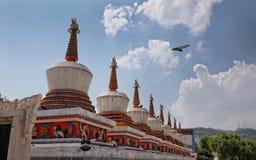 Ornamenti di un tempio buddista Fotografia Stock