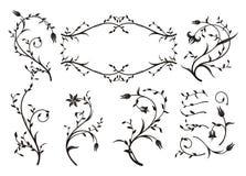 Ornamenti floreali Fotografia Stock