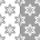 Ornamenti floreali bianchi e grigi Insieme degli ambiti di provenienza senza giunte Fotografia Stock Libera da Diritti