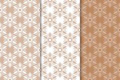 Ornamenti floreali di Brown Insieme degli ambiti di provenienza senza giunte Fotografie Stock