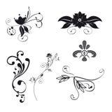 Ornamenti floreali (vettore) Fotografie Stock Libere da Diritti