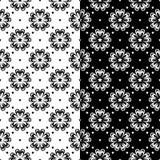 Ornamenti senza cuciture floreali in bianco e nero Insieme degli ambiti di provenienza Fotografia Stock