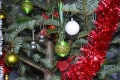 Ornamenti in un albero di Natale Immagini Stock