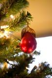 Ornamento antigo da árvore de pera Imagens de Stock Royalty Free