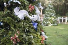 Ornamento azuis e de prata em uma árvore exterior fotos de stock royalty free