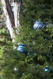 Ornamento azuis e de prata em uma árvore exterior imagem de stock