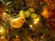 Ornamento color giallo canarino Fotografie Stock Libere da Diritti