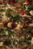 Ornamento coloridos na árvore de Natal Imagem de Stock