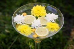 Ornamento con el limón y las flores Imágenes de archivo libres de regalías