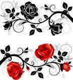 Ornamento con le rose Fotografia Stock