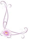 Ornamento d'angolo con il fiore rosa su un fondo bianco Fotografia Stock