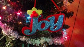 Ornamento da alegria Imagens de Stock Royalty Free