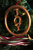 Ornamento da alegria na árvore de Natal Foto de Stock Royalty Free