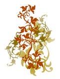 Ornamento da cor do estilo velho Fotografia de Stock Royalty Free
