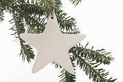 Ornamento da estrela no ramo de árvore do Natal Foto de Stock