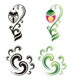 Ornamento da flor Fotos de Stock