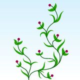 Ornamento da planta verde Imagens de Stock